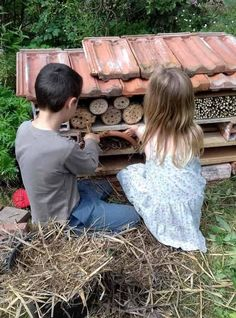 Discover recipes, home ideas, style inspiration and other ideas to try. Plan Potager Permaculture, Food Illustrations, Illustration Art, Pergola, Zero Waste, Habitats, World, Nature, Flowers
