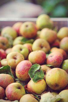 Photocase - 'An apple a day ..' ein Foto von 'Judywie'