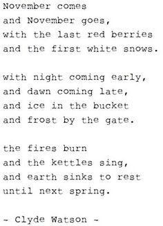 November poem - if it just would snow here (I wonder if we could fins something rowing red berries here in the desert?)