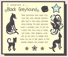 "For my Angel - - - I adopted a... Black Greyhound - 6x8"" Print. £5.00, via Etsy."