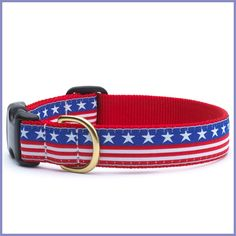 Patriotic Dog Collar for Tobias