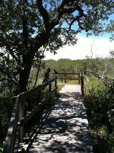 Right across the street from Coquina Beach you have the Coquina Baywalk with trails for walking (biking?). On the inter-coastal side of the water.