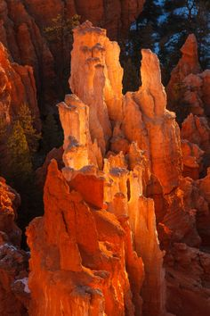 Bryce Canyon National Park, Utah; photo by James Marvin Phelps on 500px