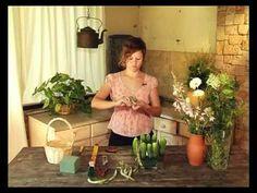 Ботаника. Огурцы и садовые цветы - YouTube
