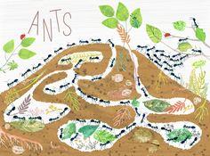 image1 copy 3 Insect Crafts, Insect Art, Bug Activities, Kindergarten Activities, Art Inspiration Drawing, Inspiration For Kids, Art For Kids, Crafts For Kids, Elementary Art
