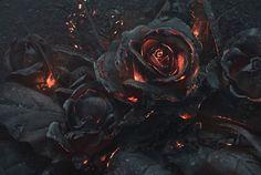 Een boeket van zwartgeblakerde zwarte vuurrozen