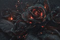 We Created A Bouquet Of Burning Roses | Bored Panda