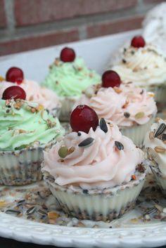 ✼♫✼ Bird Seed Cakes