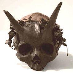 Entre 1920 et 1940, en France, on découvrit un crâne particulièrement étrange…