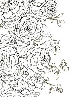 Free Printable Coloring Pages  www.youradvokit.com/freeprintablecoloringpages.html