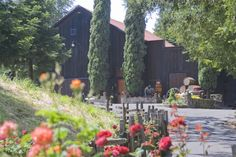 http://arafanelliwinery.com/photos  A.Rafanelli  Northwest of Healdsburg