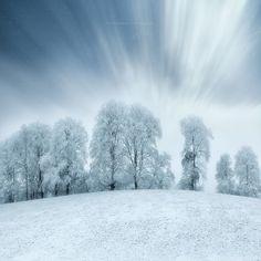 Frost  Landscapes photo by mariuskasteckas http://rarme.com/?F9gZi