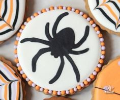 Spider Decorated Cookie   Sweetopia