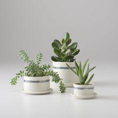Banded Porcelain Planter / Schoolhouse Electric