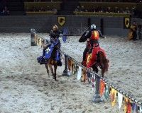 Medieval Times, located in Myrtle Beach, is fun for all ages!