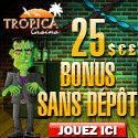 BONUS  CASINOS EN LIGNE FRANCOPHONES  JOUEURS DE FRANCE ACCEPTES - Paiement des gains sous 24h à 48 heures maximum.
