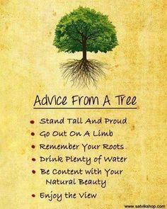 Learn character from trees values from roots and change from leaves. Tasneem Hameed Just a little something to think about the next time you do tree pose Tree Quotes, Learn Hebrew, Hypnotherapy, Thats The Way, Quotes About Moving On, Back To Nature, Belleza Natural, Stand Tall, Inspirational Thoughts