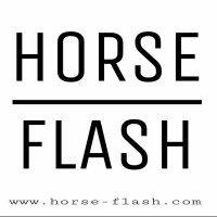 Das Pferdemagazin 2.0 - Pferdetrends, Reitertrends immer den Profis, Bloggern und Youtubern auf der Spur. Wir gestalten für dich das interaktive Pferdemagazin 2.0!