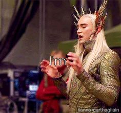 (GIF) Fabulous Thranduil never fails to crack me up XD