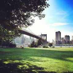 Enjoying the shade in Brooklyn Park under the Brooklyn Bridge, New York. More on www.sweetdivergence.com
