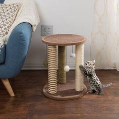 Furniture Scratches, Pet Furniture, Modern Cat Furniture, Small Kittens, Cats And Kittens, Diy Cat Scratching Post, Diy Cat Tree, Cat Trees, Cat Playground