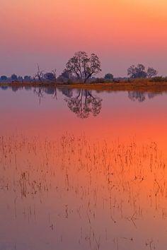 sublim-ature:  Okavango Delta, Botswanna by Aubrey Stoll