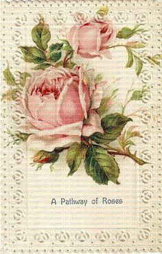 A01 Attic Roses 7317- Vintage, Victorian, Old, Antique, Catherine Klein, Paul Delongpre, Ephemera,