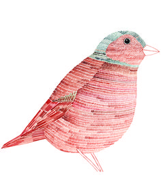 Loving the simple nature of this little birdy.