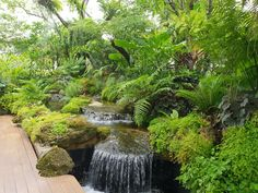 You can use your backyard pond for spending quality family time and have evening tea. The good thing about the backyard pond is that gurgling waterfalls are very much attractive and appealing. So if you haven`t decided on having a pond you must do it now. River Rock Landscaping, Tropical Landscaping, Tropical Garden, Backyard Landscaping, Indoor Waterfall, Pond Waterfall, Landscape Architecture, Landscape Design, Mini Mundo