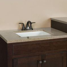 Attrayant Glacier Bay Modular 24.5 In. W Bath Vanity In Java With Solid Surface Vanity  Top In Cappuccino With White Basin