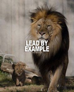 Lead by example..