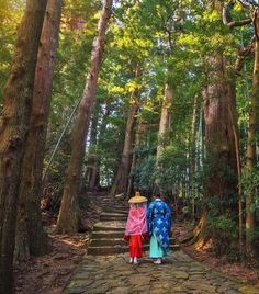 Kumano Kodo pilgrimage trails near Osaka are the sacred ancient pilgrimage routes that traverse through the largest Peninsula of Japan, the Kii Hantō. | 10 Life-Changing Trips You Need to Take