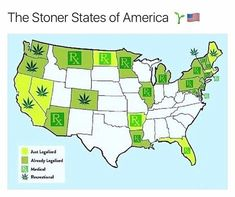 The Complete Guide to Cannabis Gender and Reproduction - ILGM Medical Marijuana, Ganja, Weed Humor, Stoner Girl, Buy Weed, Smoking Weed, 1, Counting, Weed