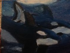 *OLD* orcas!