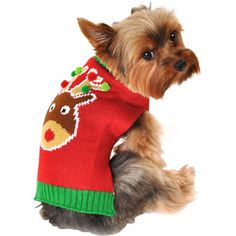 Simply Dog Reindeer Dog Sweater, Red, (Multiple Sizes Available)