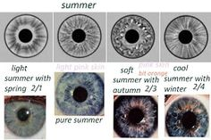 Eye Types of Summer Seasonal Analysis -  expressing your truth blog: Eye Types & Iridology