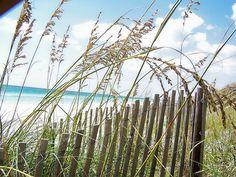 Along 30A..Florida Coast, Seagrove Beach, Florida