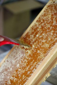 Step-by-step honey harvesting tutorial for beekeepers. #beekeeping #beekeepingtips