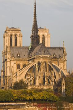 Notre-Dame cathedral, with flying buttress supports, morning, Paris, France