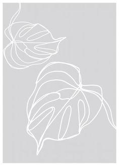 Monstera Illustration Poster from Dear Sam Art And Illustration, Floral Illustrations, Sketch Faces, Most Beautiful Wallpaper, Graphic Design Inspiration, Pattern Art, Clipart, Line Drawing, Wallpaper Backgrounds