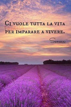 Solo al termine della tua vita capisci l'importanza di vivere!!