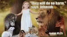 God cannot lie! Titus 1:2 https://www.jw.org/finder?docid=502013341&wtlocale=E&srcid=share