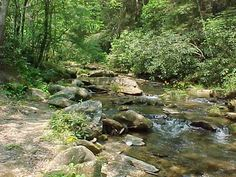 Fall Creek State Stocked Trout Stream at Fall Creek Cabins near ...