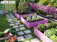 So cool these boxed gardens painted a purple lilac with matching picket fence. Adding stepping stones so creative & organized.