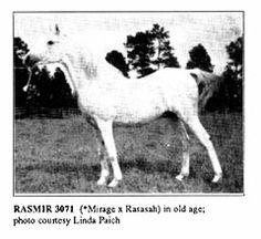 Rasmir