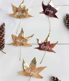 Gold Dipped Leaves: Dog-eared in gold leaf, these simple place cards require little more than collecting a freshly-fallen batch of leaves. Click through for more DIY place card ideas perfect for Thanksgiving. Thanksgiving Diy, Thanksgiving Place Cards, Thanksgiving Table Settings, Thanksgiving Tablescapes, Diy Thanksgiving Decorations, Thanksgiving Table Centerpieces, Thanksgiving Cupcakes, Friends Thanksgiving, Thanksgiving Pictures