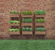 7 Top Ideas For Your Vertical Vegetable Garden Gutter Garden, Herb Garden, Vegetable Garden, Home And Garden, Verticle Garden, Small Gardens, Outdoor Gardens, Garden Projects, Garden Inspiration
