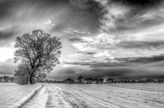 """This black & white image was actually taken at sunrise on a winter morning. The clouds in the sky gave real interest when seen in mono. It won a """"highly commended"""" award in the monochrome section of the Societies November 2013 competition."""
