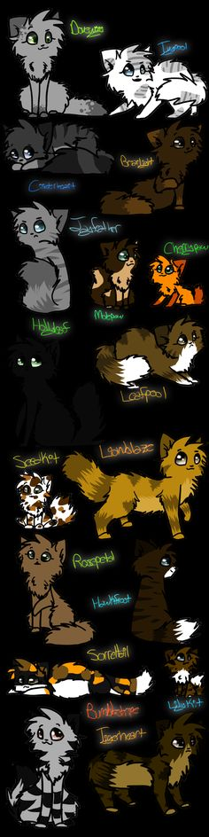 I love this and at least in this one you can see Hollyleaf's pelt.