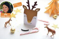 May a travaillé en coopération avec notre boutique CadeauxFolies pour vous présenter comment réaliser un DIY de Noel : des petites boîtes en formes de Cerfs